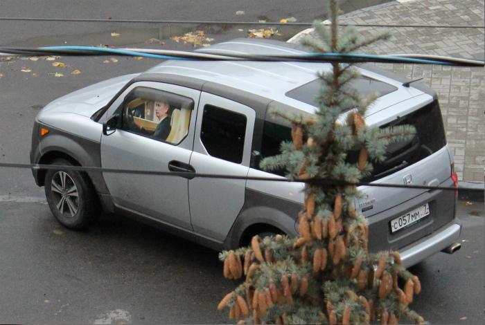 Владимир Владимирович, вы ли это? | Фото: МирТесен.