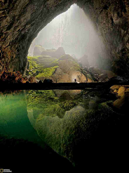 Самая крупная пещера в мире. В некоторых местах пещеры, куда попадают солнечные лучи, растут деревья и трава.
