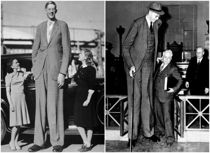 Самый высокий человек в истории.