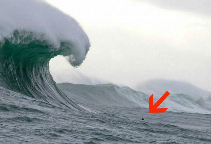 Человек, против большой волны.