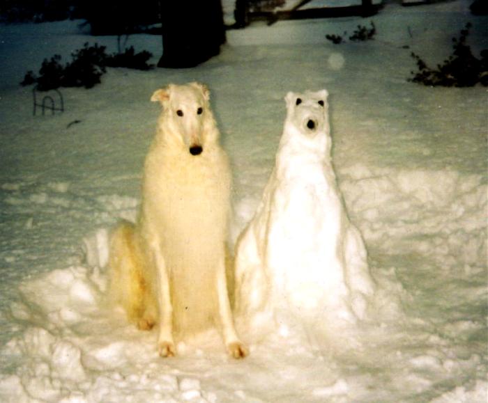 Снежная подружка.