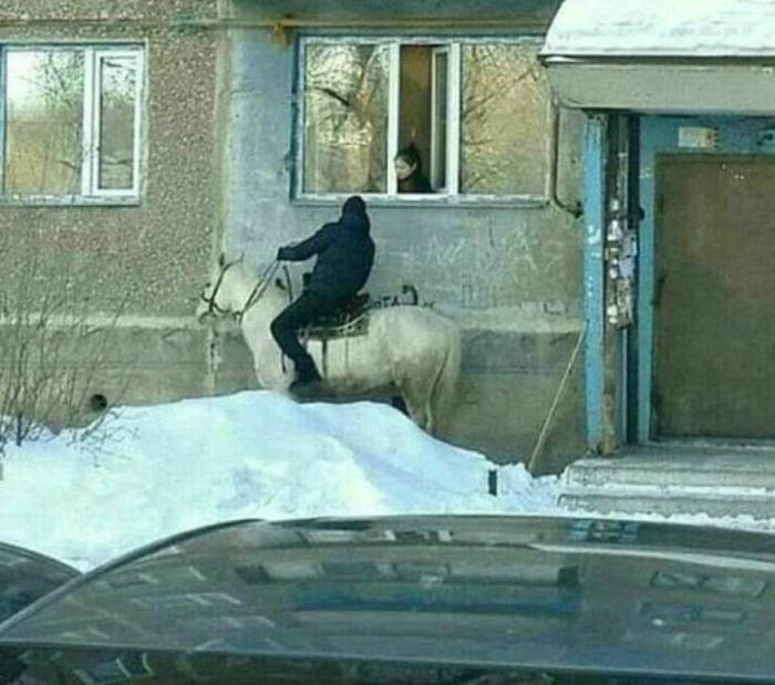 Принц на белом коне, собственной персоной! | Фото: Энциклопедия Знаний.