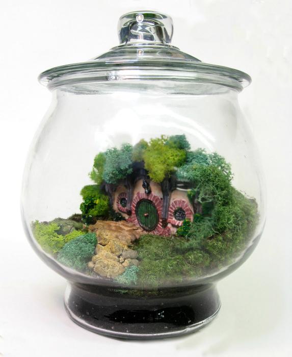 Небольшой декоративный террариум с домиком.