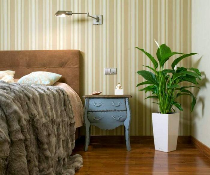 Растения в спальне. | Фото: LiveInternet.