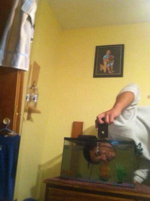 «А как еще фотографироваться с аквариумными рыбками.»