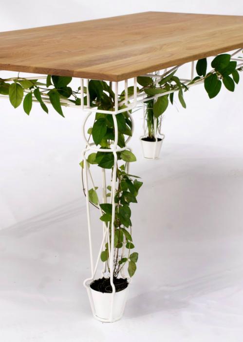 Стол, украшенный живыми растениями.
