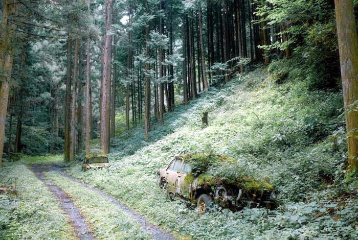 Кладбище старых авто.