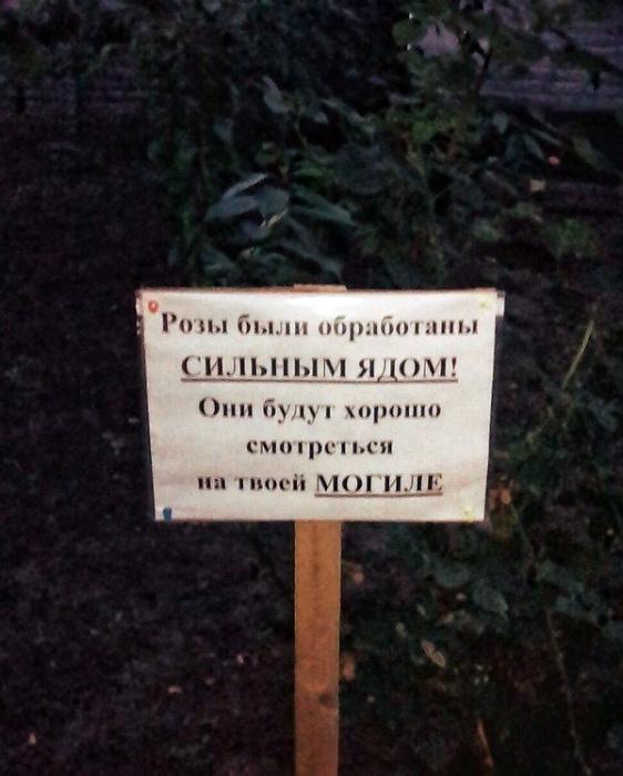 Для любимых соседей и гостей нашего двора.