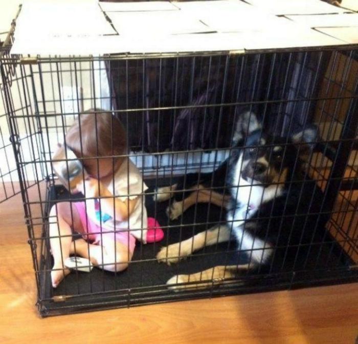 Детки в клетке.