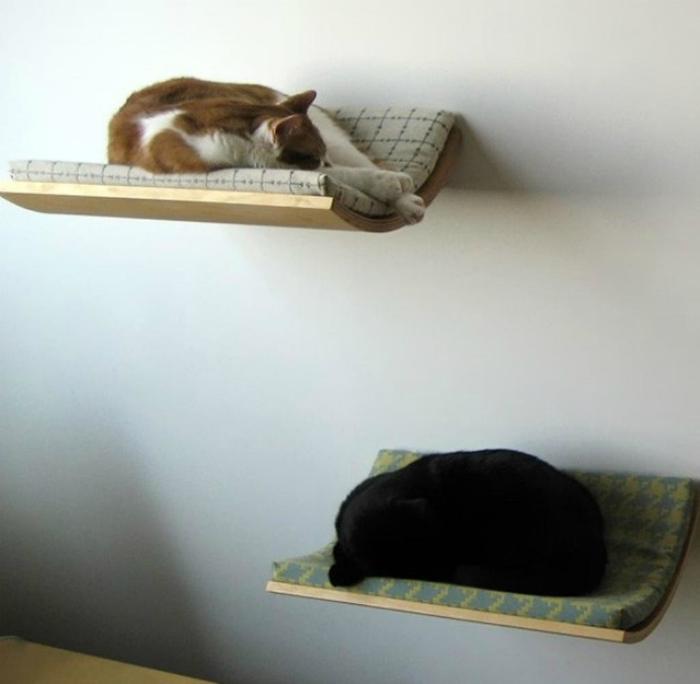 Полки, оборудованные под кошачьи кровати.