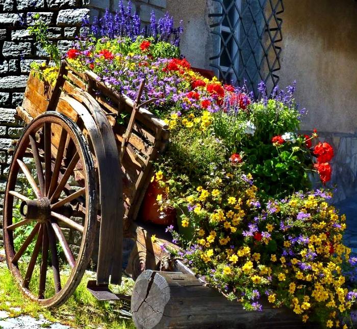 Клумба в садовой тележке.