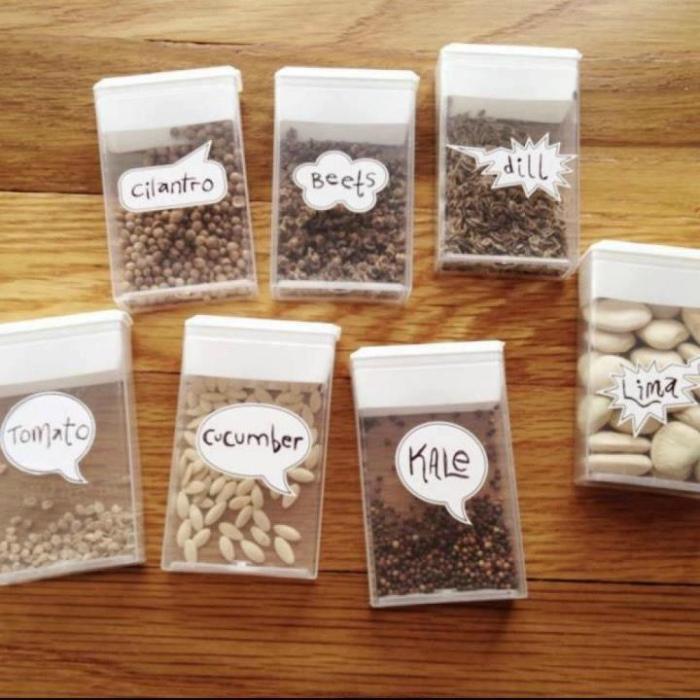 Хранение семян.