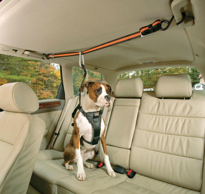 Собачий ремень безопасности Auto zip line.