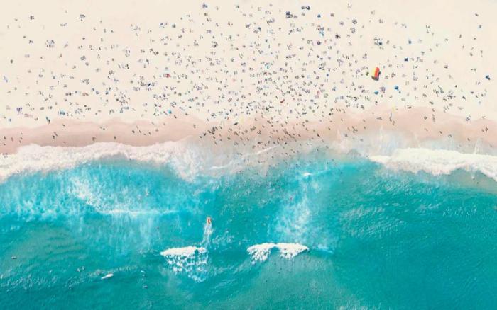 Самый посещаемый пляж Сиднея.