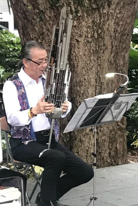 Уникальный музыкальный инструмент. | Фото: Пикабу.