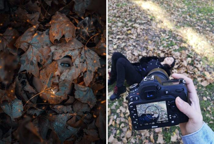 Novate.ru рассказывает, как управлять листьями через экран. | Фото: Wprost.