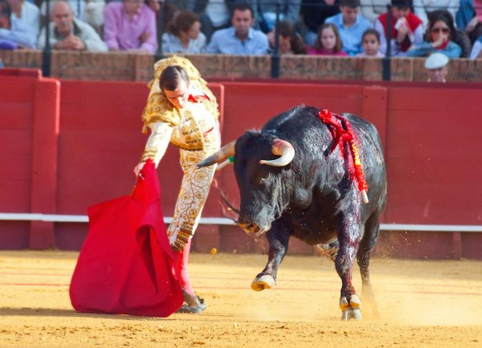 Коррида - главный вид спорта в Испании.