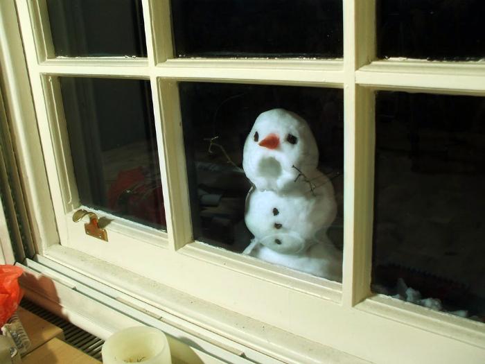 Любопытный снеговик.
