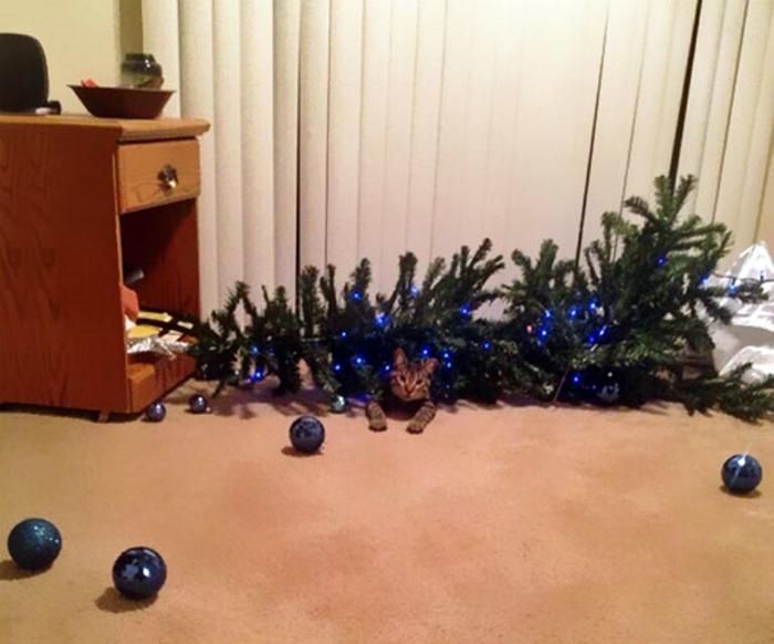 Крушение елки.