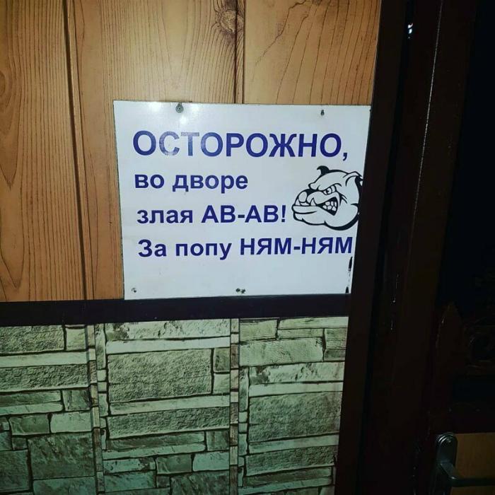 Как это мило: «Ав-ав», «Ням-ням»! | Фото: Humor.fm.