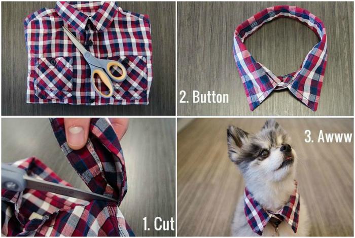 Стильный воротничок для собаки.