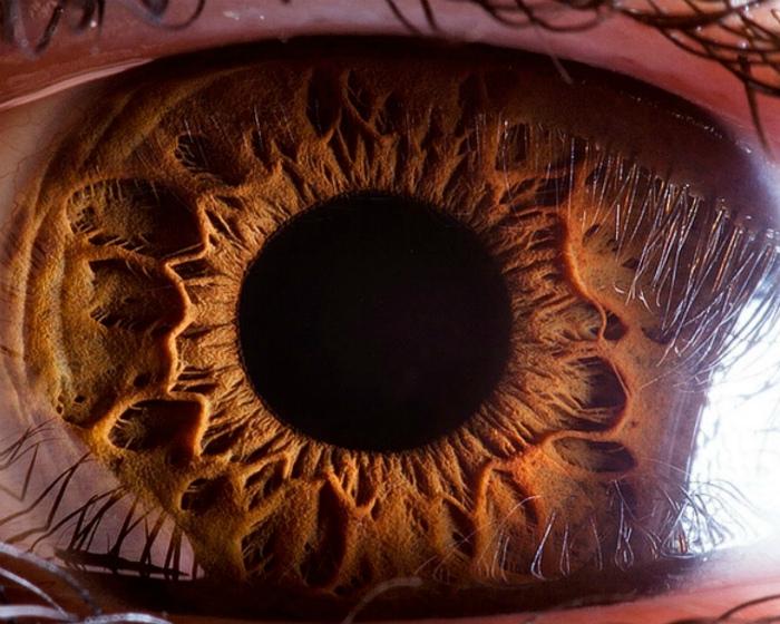 Человеческий глаз вблизи.