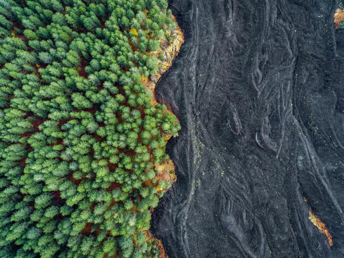Застывшая лава и лес.