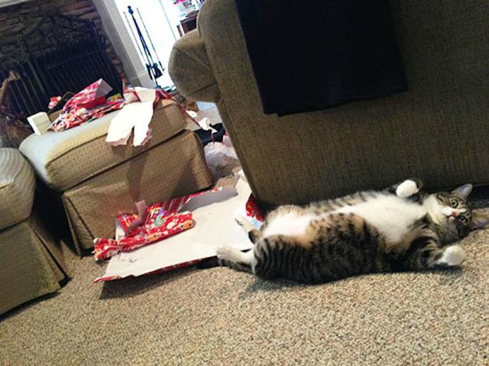 Любезно развернул подарки.