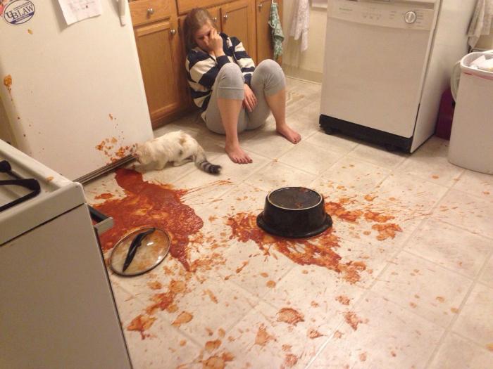 Кухонная катастрофа.