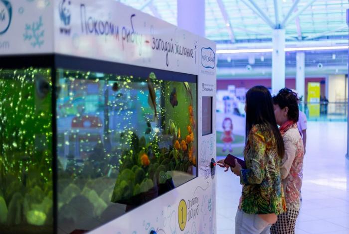 Благотворительный аквариум.
