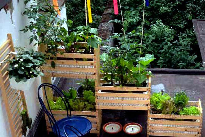 Многоуровневый сад из ящиков. | Фото: Pinterest.