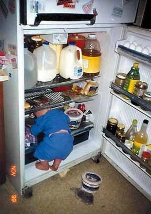 Исследователь холодильника.