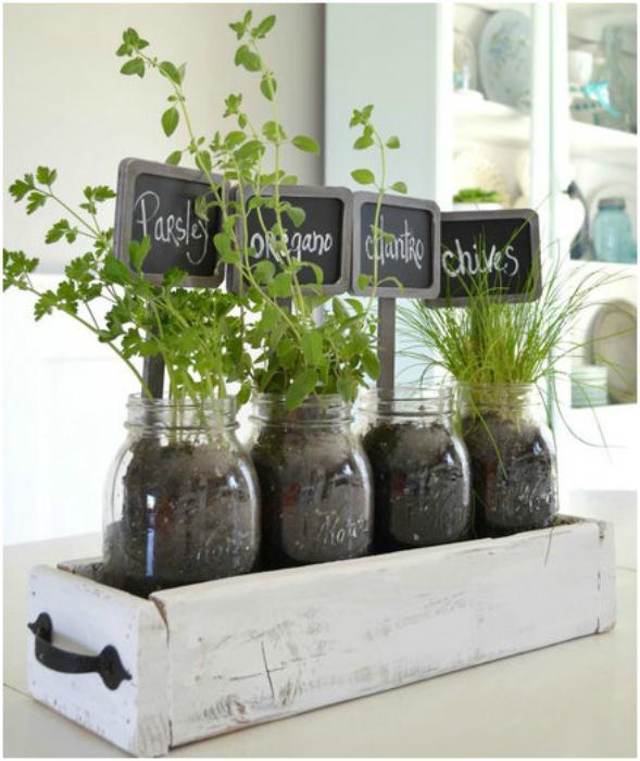 Пряные травы в стеклянных банках.