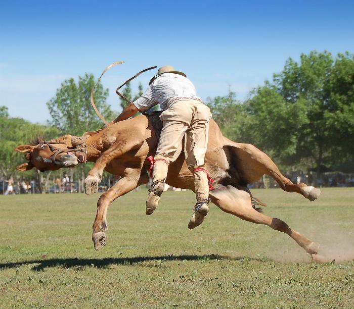Упал вместе с лошадью. | Фото: Flickr.
