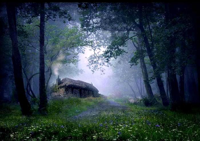 Каменная изба в лесу.