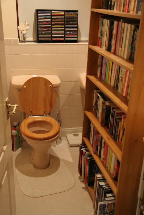 «Книги - это, конечно, прекрасно. Но библиотека в туалете - уже чересчур!»