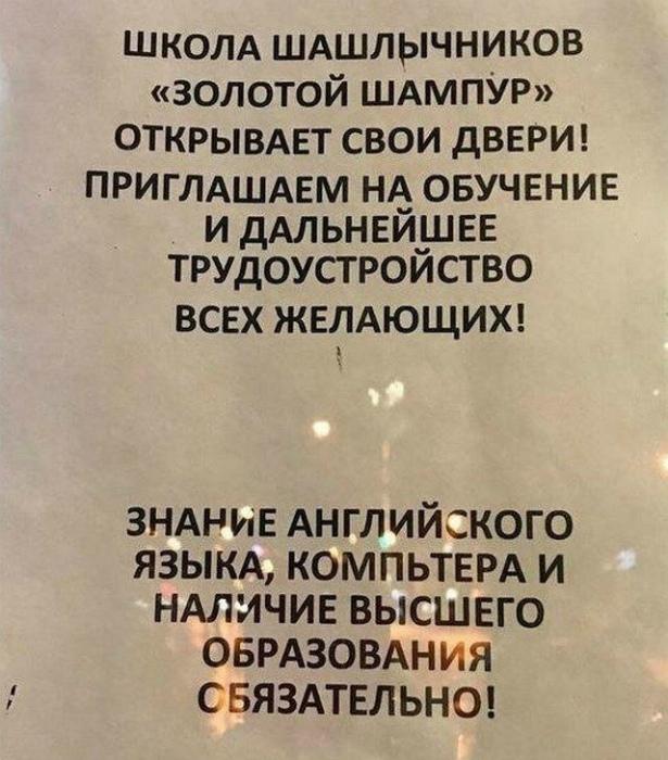 Novate.ru в шоке от того, какие образованные люди эти шашлычники. | Фото: pisez.com.