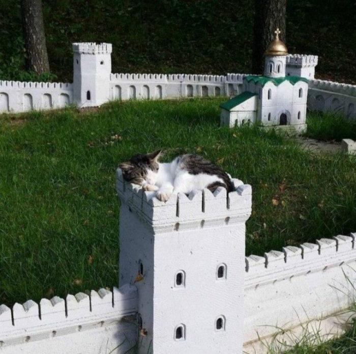 Какая крепость, такая и охрана. | Фото: Шняги.Нет.