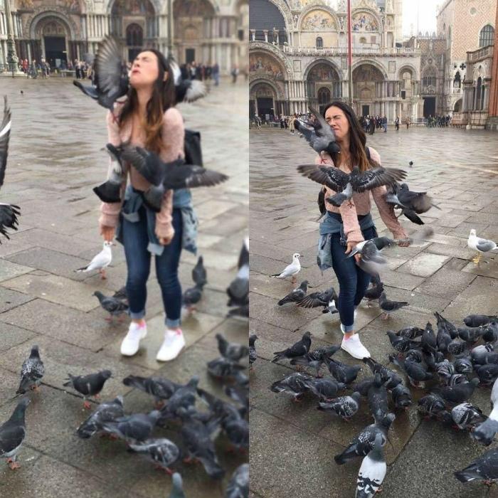 Эффектное фото с голубями. | Фото: Новости N.