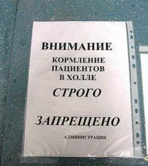 «А чего они попрошайничают?» | Фото: Kaifolog.ru.