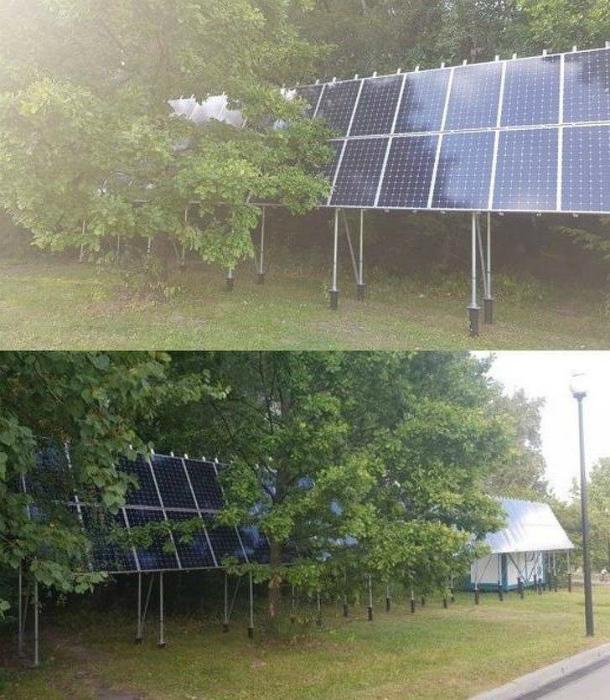 Спрятали солнечные панели от солнца. | Фото: Cheezburger.