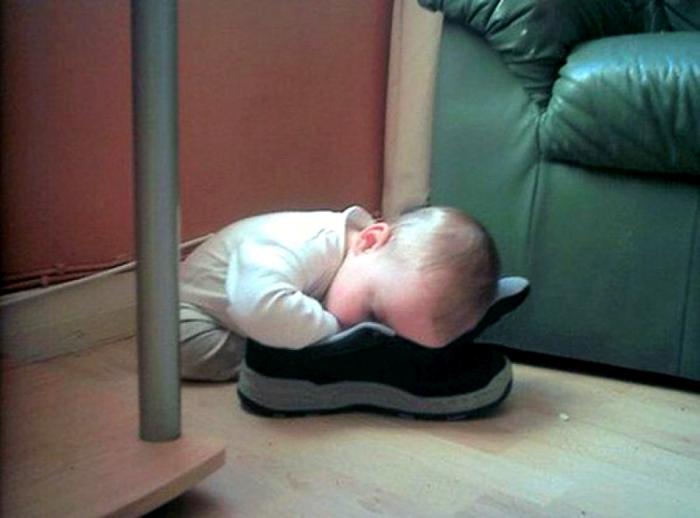 Кроссовок - уютное местечко для сна.