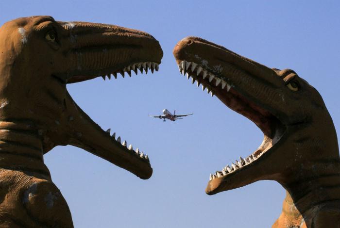 Не могут поделить самолет. | Фото: Telegraph.