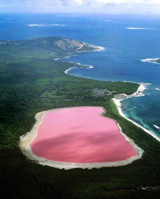 Таинственное озеро розового цвета.