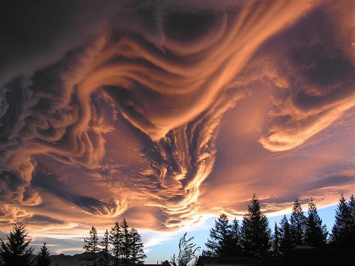 Шельфовое облако.