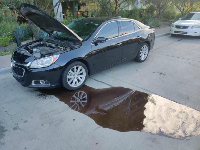 «Сюрприз» жизни автомобилиста. | Фото: Reddit.