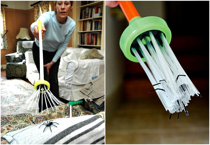 Гуманная ловушка для насекомых.