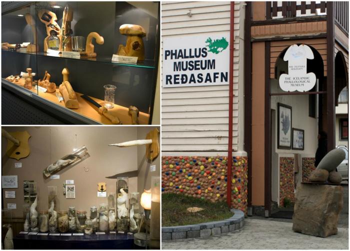 Фаллологический музей, Хусавик, Исландия.