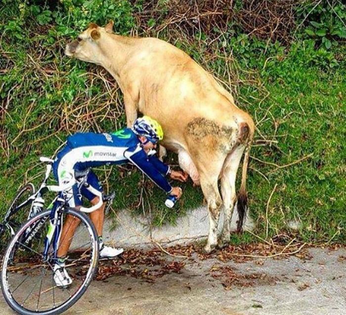 «Мужчина, я вас в первый раз вижу!»   Фото: Picuki.com.
