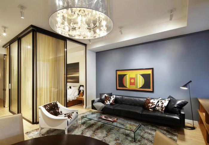 Стеклянная перегородка в интерьере однокомнатной квартиры.